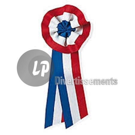 badge cocarde FRANCE bleu blanc rouge 6cm